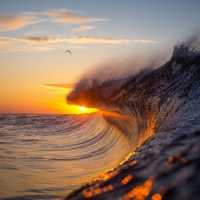 As Ondas Monumentais de Warren Keelan