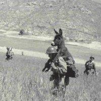 25 Divertidas Fotografias da II Guerra Mundial